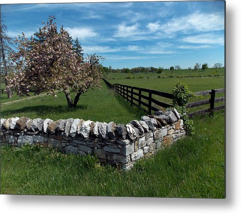 Pastural Metal Print featuring the photograph Right Angles by Skip Willits