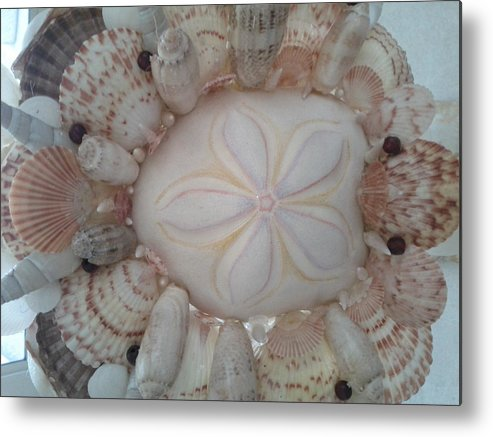 Sandallor N Shell Metal Print featuring the photograph Sandallar Beauty by Pearl Otero