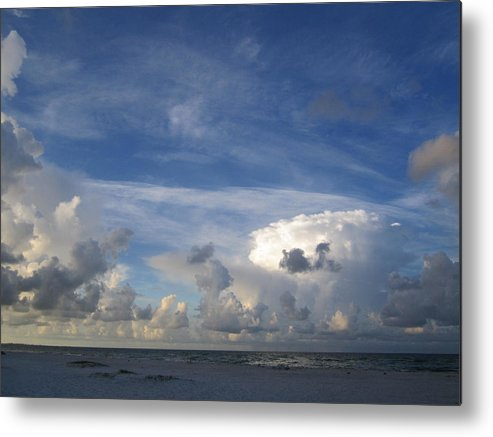 Metal Print featuring the photograph Sb40 by Pepsi Freund