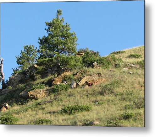 Scenery Metal Print featuring the photograph Scenic Hillside by Vaswaith Elengwin