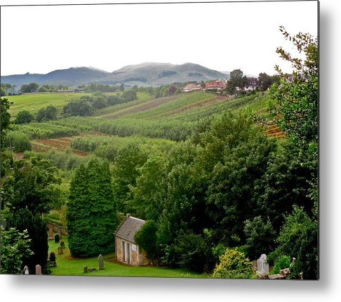 Scotland Metal Print featuring the photograph Scottish Countryside by Denise Mazzocco
