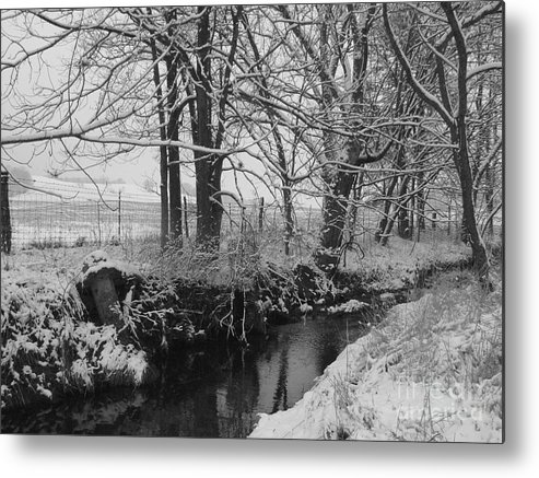 Winter Scene Metal Print featuring the photograph Snow Creek Woods by Laura DeCamp