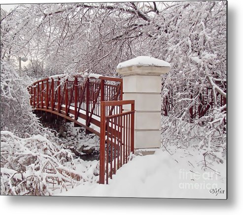Irfancollection Metal Print featuring the photograph Snow Way Or No Way by Irfan Gillani