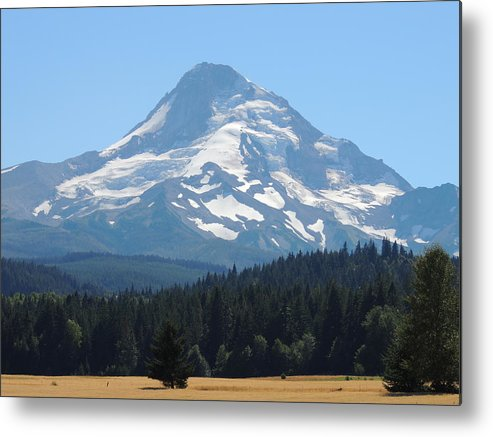 Nature Metal Print featuring the photograph Snowy Mount Hood by Lucy Howard