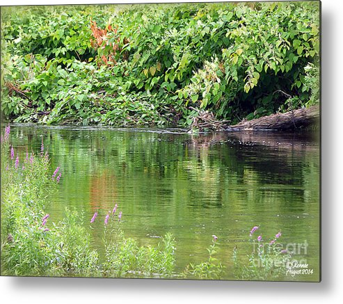 Water Metal Print featuring the photograph Summertime by Rennae Christman
