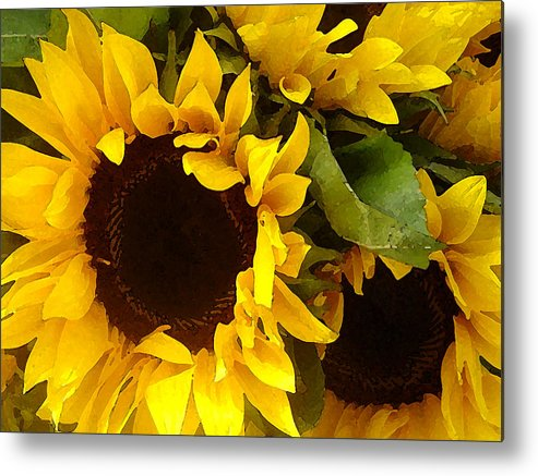 Sunflowers Metal Print featuring the painting Sunflowers Wide by Amy Vangsgard