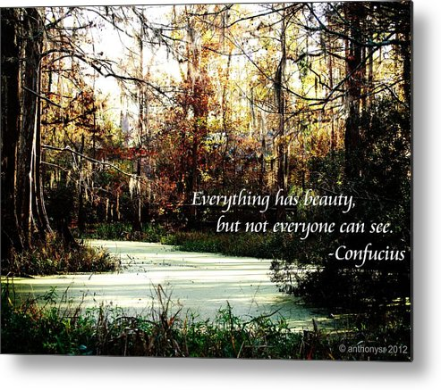 Metal Print featuring the photograph Swamp Beauty by Anthony Walker Sr