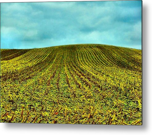 Indiana Corn Rows Metal Print featuring the photograph The Corn Rows by Julie Dant