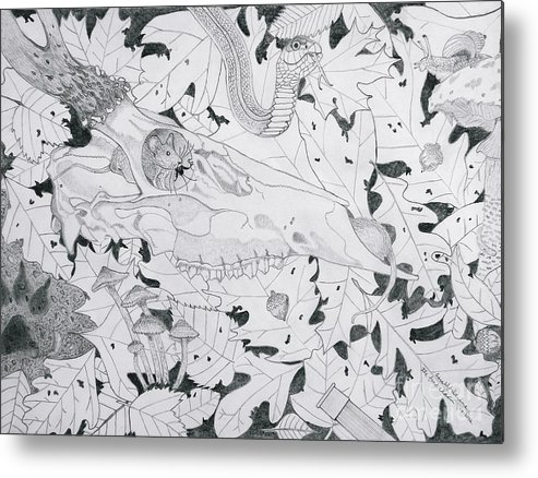 The Food Chain Metal Print featuring the drawing The Food Chain With Description by Gerald Strine