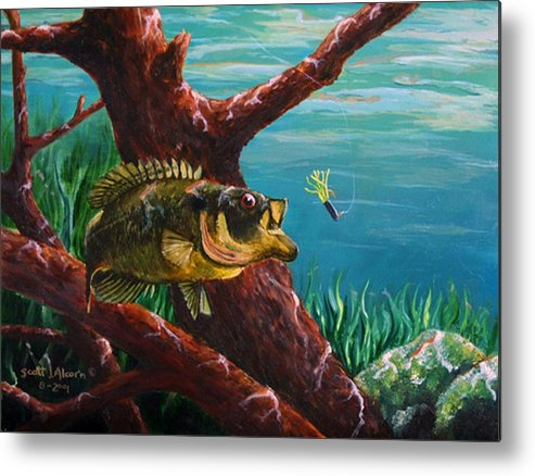 Fish Metal Print featuring the painting The Hit   Warmouth by Scott Alcorn