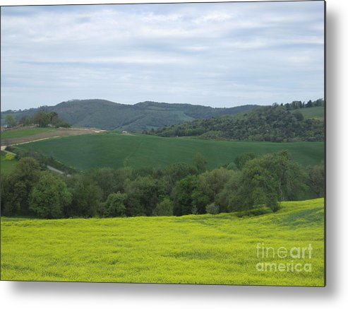 Tuscany Metal Print featuring the photograph Tuscany by Tiffany Reine