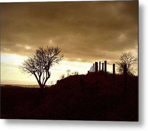 Brown Metal Print featuring the photograph Winter On The South Downs by Paul Chessell