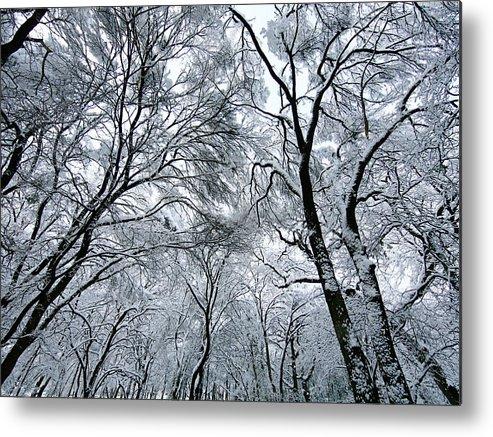 Winter Metal Print featuring the photograph Winter Wonder by Jeff Klingler