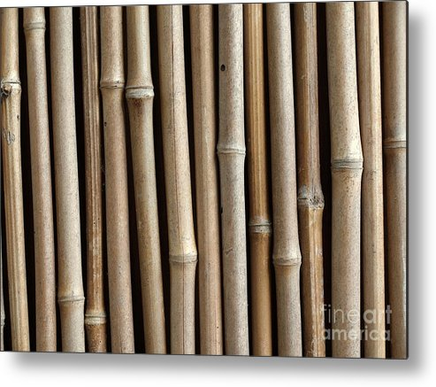 Bamboo Metal Print featuring the photograph Bamboo Fence by Yali Shi