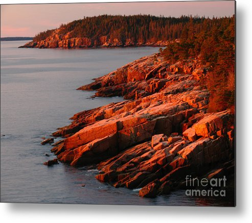 Acadia National Park Metal Print featuring the photograph Maine Granite Coast by Juergen Roth