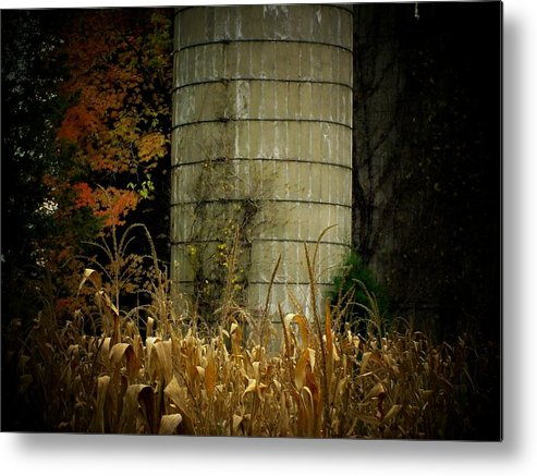Farm Metal Print featuring the photograph Silo by Michael L Kimble
