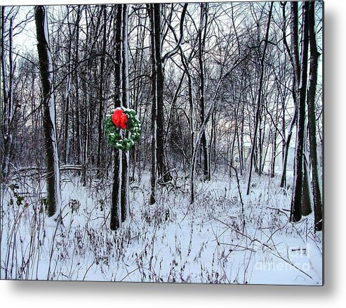 Metal Print featuring the photograph Tyra's Woods At Christmas by Julie Dant