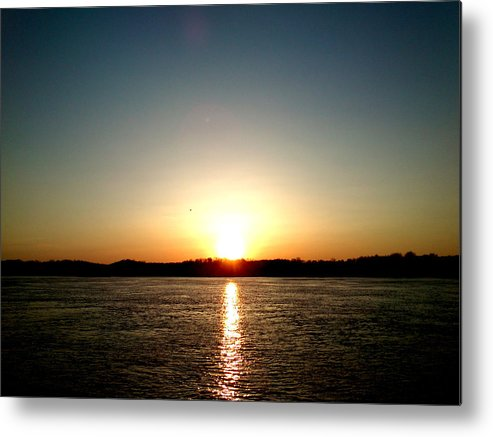 Sun Metal Print featuring the photograph Sunset by Lucy D