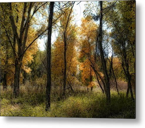 Landscape Metal Print featuring the photograph 2023 by Peter Holme III