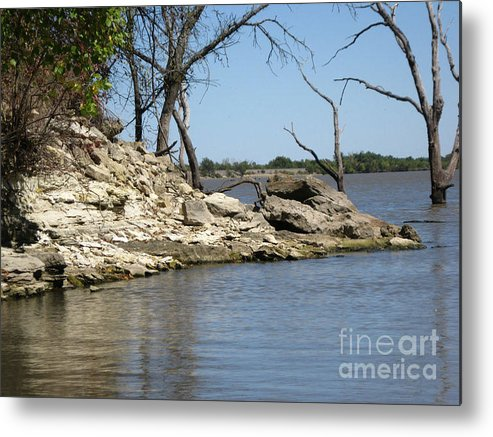Metal Print featuring the photograph A Day At The Lake by Teresa Carvell
