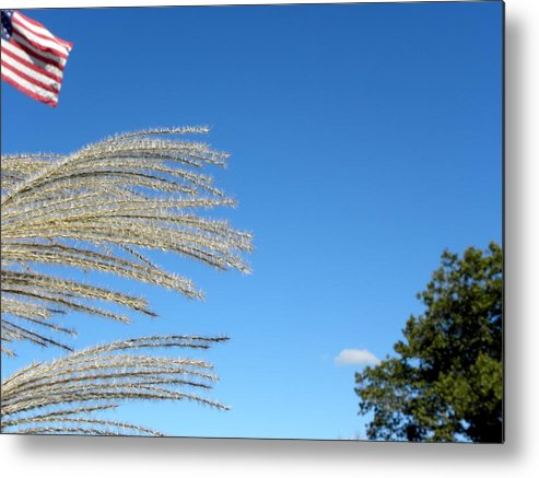 Usa Metal Print featuring the photograph An Easterly Flow by Kim Galluzzo Wozniak