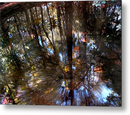 Pond Metal Print featuring the photograph Anomaly by Tammy Cantrell