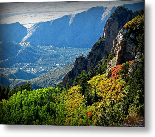 Sandia Mountains Wilderness Metal Print featuring the photograph Autumn Below Evergreen Hills by Aaron Burrows