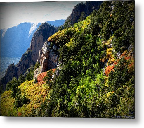 Sandia Mountains Wilderness Metal Print featuring the photograph Autumn In The Sandias by Aaron Burrows