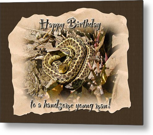 Boy birthday greeting card baby garter snake metal print by mother boy metal print featuring the photograph boy birthday greeting card baby garter snake by mother m4hsunfo