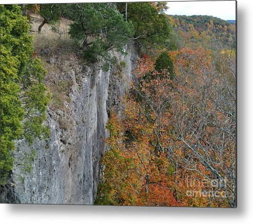 Buzzards Roost Metal Print featuring the photograph Buzzards Roost by Jennifer Kelly