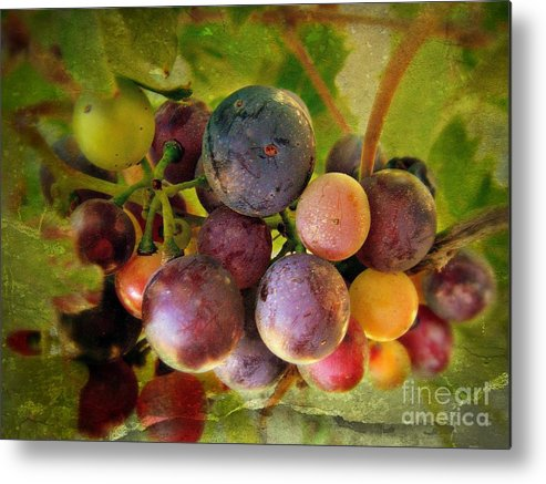 Wine Metal Print featuring the photograph Colors Of Wine by Kevin Moore