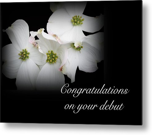Debut Metal Print featuring the photograph Congratulations On Your Debut - White Dogwood Blossoms by Mother Nature