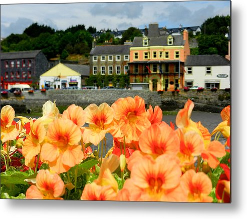 Flowers Metal Print featuring the photograph Dingle And Flower Pot by David Resnikoff