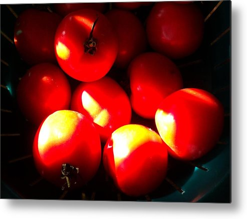 Food Metal Print featuring the photograph Early Girl Tomatos by Janice Robertson