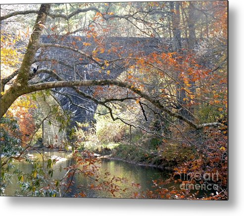 Fall Metal Print featuring the photograph Fall Delight 3 by Janet Dickinson