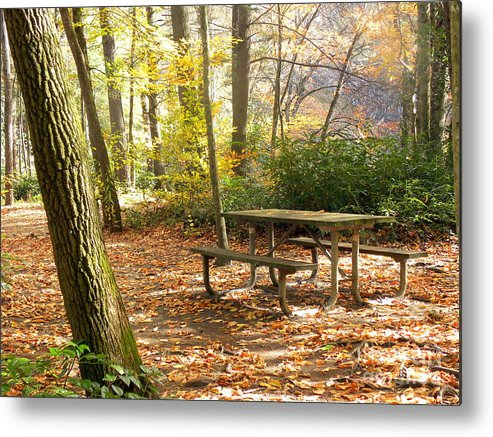 Fall Metal Print featuring the photograph Fall Delight 4 by Janet Dickinson