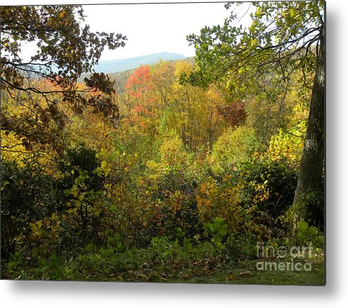 Fall Metal Print featuring the photograph Fall Delight 7 by Janet Dickinson
