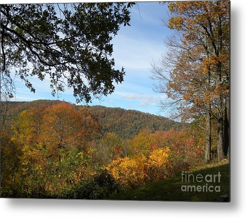 Fall Metal Print featuring the photograph Fall Delight 9 by Janet Dickinson