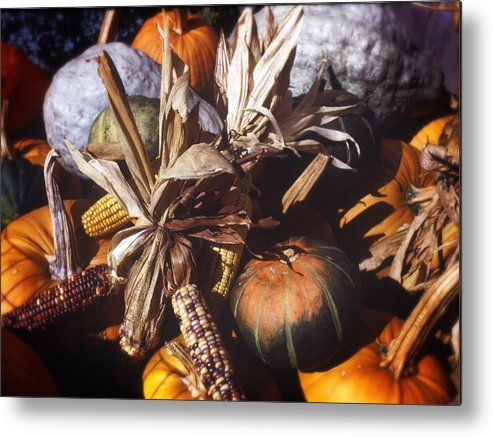 Squash Metal Print featuring the photograph Fall Vegetables by Federico Arce