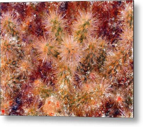 Fireworks Metal Print featuring the digital art Fireworks Explosion by Marilyn Sholin