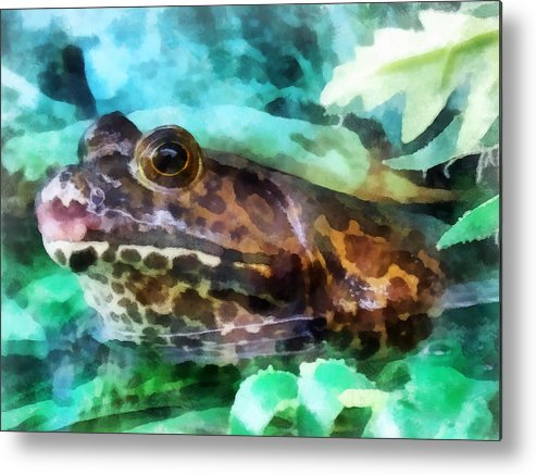 Frog Metal Print featuring the photograph Frog Ready To Be Kissed by Susan Savad
