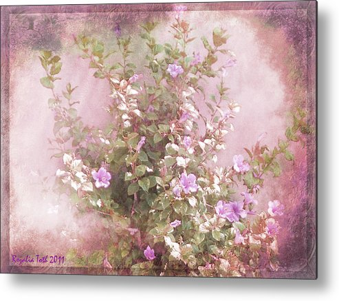 Hibiscus Metal Print featuring the photograph Hibiscus The Flower Of Pride by Rozalia Toth