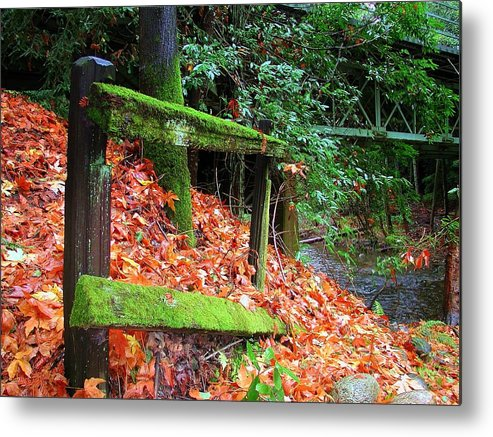 Big Sur Metal Print featuring the photograph Mossy Fence by Rick Mutaw