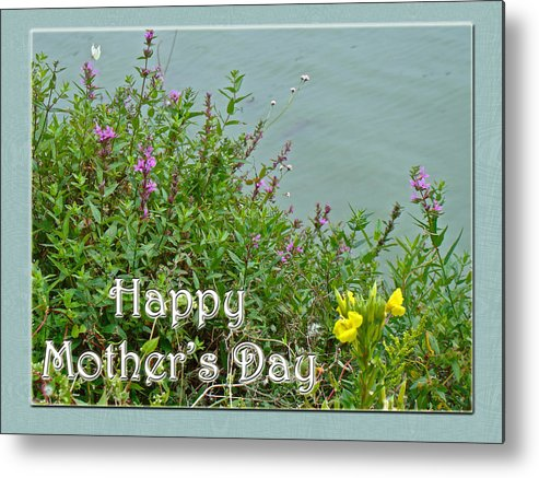Mothers Day Metal Print featuring the photograph Mother's Day - Wildflowers By The Pond by Mother Nature