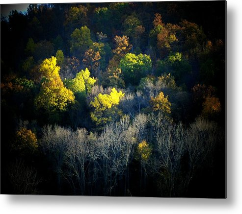 Mountain Metal Print featuring the photograph Mountain Foilage by Michael L Kimble