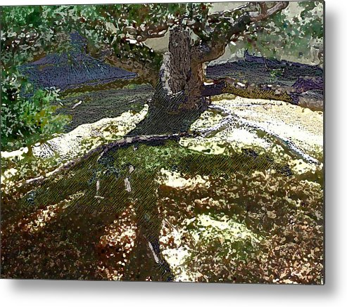 Metal Print featuring the digital art Old Tree II by Sally Fowler