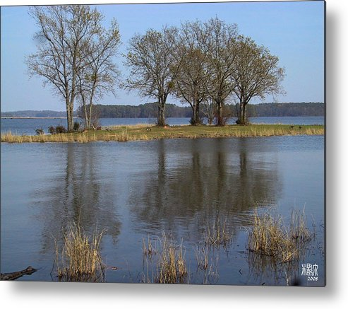 Tree Metal Print featuring the photograph Peace And Reflection by Michele Caporaso