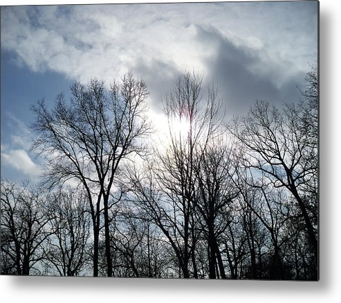 Trees Metal Print featuring the photograph Peeking Sun Through The Branches by Corinne Elizabeth Cowherd