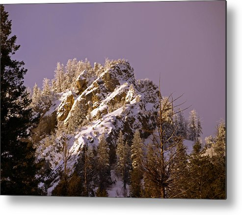 Snow Metal Print featuring the photograph Rays Of Hope Warmth And Beauty by DeeLon Merritt
