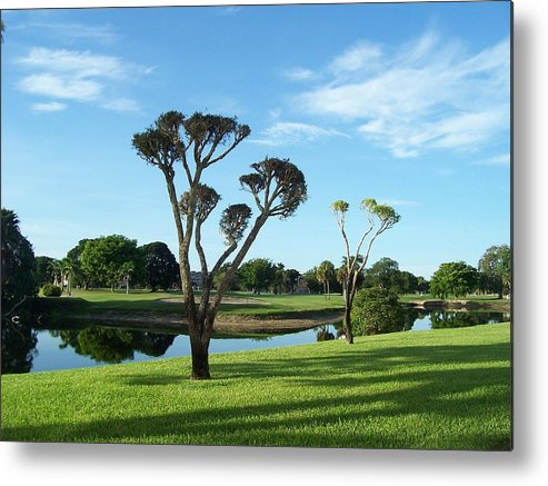 Landscape Metal Print featuring the photograph Reflections Of Summer by Sheila Silverstein